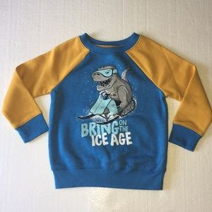 Cat & Jack Boys Sweater (Bring On The Ice Age)